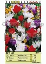 Набор луковиц - тюльпаны и крокусы (25 шт в пакете) 38004. Распродажа -50%