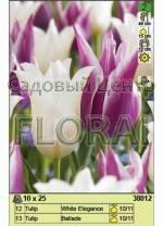 Набор тюльпанов (25 шт в пакете) 38012. Распродажа -50%