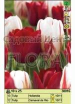 Набор тюльпанов (25 шт в пакете) 38016.