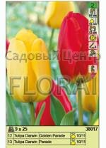 Набор тюльпанов (25 шт в пакете) 38017. Распродажа -50%