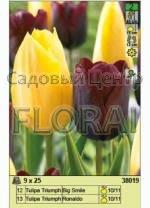 Набор тюльпанов (25 шт в пакете) 38019. Распродажа -50%