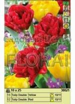 Набор луковиц тюльпанов (25 шт в пакете) 38021. Распродажа -50%