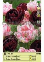 Набор тюльпанов (25 шт в пакете) 38022. Распродажа -50%