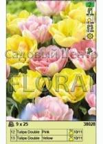 Набор тюльпанов (25 шт в пакете) 38028. Распродажа -50%