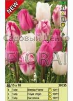 Набор тюльпанов (18 шт в пакете) 38035. Распродажа -50%