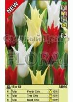 Набор тюльпанов (18 шт в пакете) 38036. Распродажа -50%