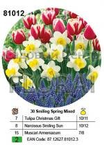 Набор луковиц (тюльпаны, нарциссы, мускари) в посадочной корзине 30 шт 81012