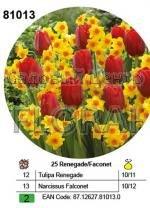 Набор луковиц (тюльпаны и нарциссы) в посадочной корзине 25 шт 81013