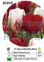 Набор тюльпанов в посадочной корзине 25 шт 81015