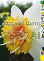 Нарцисс Petit Four  (5 шт в красивой коробочке) 90299