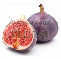 Инжир темно фиолетовый P10