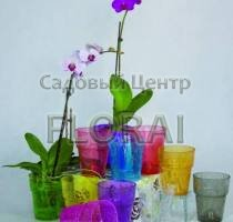 КАШПО для орхидей стеклянное с эффектом потрескавшегося стекла d15 белое