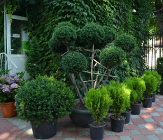 Садовый Центр FLORAI_2